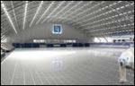 arena_icebear_thumb.jpg