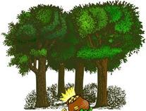 guld_skog
