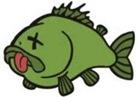 fish_dead