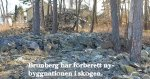 kindblom_stenar