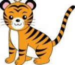 tiger20